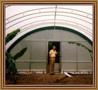 temporary greenhouses