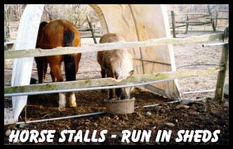 Horse Run In Shelter