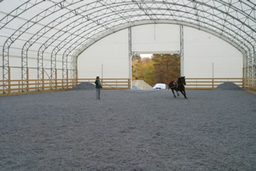 horse shelters portable horse shelter run  sheds  great prices