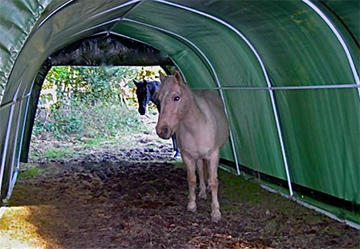 Portable Horse Shelters